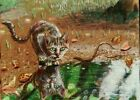 """Jacob Landis Limited edition ACEO print /250 kitty tabby cat """" Puddle Reflection"""