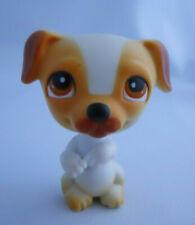 Littlest Pet Shop Begging Jack Russell Terrier Dog #40 Doggie Diner Puppy Lps