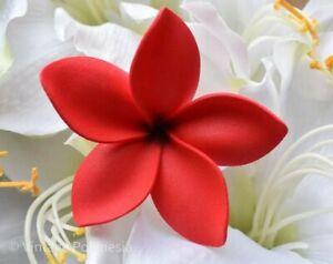 Hawaiian/Island/Tropical Plumeria Flower Hair Accessories w/Stem