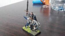 General Dark Elf Warhammer metal cavalry Hero