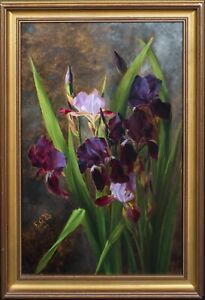 19th Century English School Still Life Of Bearded Irises In The Wild Signed FG