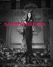 Morticia ADDAMS FAMILY STUNNING 16x20 archival photo LARGE! Carolyn Jones TV