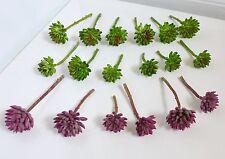 18 Miniature Grasses Artificial Succulents Plants Doll House Landscape