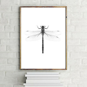 DRAGONFLY NORDIC MODERN SCANDINAVIAN MINIMALISTIC INSECT ART PRINT HIGH QUALITY