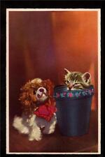 vintage Kitten in pot watching toy dog Cat France postcard