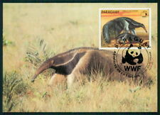 PARAGUAY MK WWF FAUNA AMEISENBÄR ANTEATER MAXIMUMKARTE MAXI CARD MC CM ar76