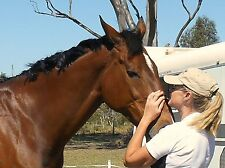 HERBS FOR HORSES 3kg Itch Blend, horses prone to allergic reactions & itchy skin
