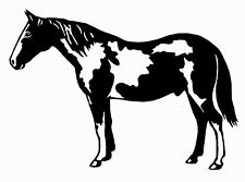 PAINT PINTO HORSE STICKER DECAL BRAND NEW FOR CAR, 4WD, FLOAT, TACK BOX