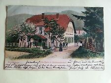 Eulengebirge Schlesien,Villa Marie in Steinkunzendorf - Litho 1904
