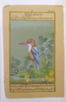 Hand Painted King Fisher Bird Miniature Painting India Artwork Paper Nature art