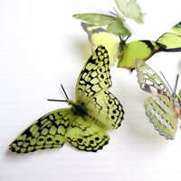 12 Pack Butterflies - Olivegreen - 5 to 6 cm - Cakes, Weddings, Crafts, Cards,