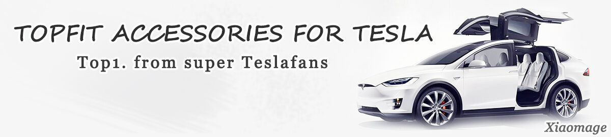 Teslafans