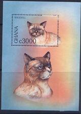 Ghana 1992 MNH Cats