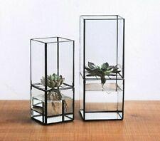 Transparent Glass Double Layer Hydroponic Succulent Plant Vase Plant Flower Pot