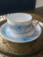 VTG Bavaria Rosenthal Donatello Tea Cup & Saucer. Delicate Blue Pattern. EUC.