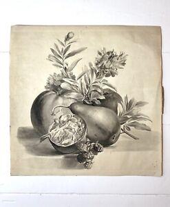 Large Antique Monochrome Watercolour, Still Life, Fruit & Flowers, Circa 1830