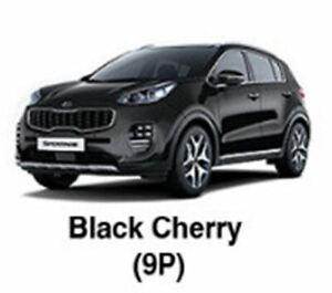 KIA OEM Touch-up Brush & Pen Paint(Color Code: 9P - Black Cherry) fit Sportage