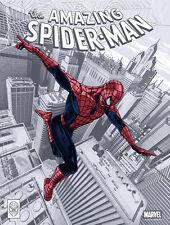 THE AMAZING SPIDER MAN POSTER PRINT MONDO CHRIS SKINNER MARVEL SPIDER MAN LTD ED