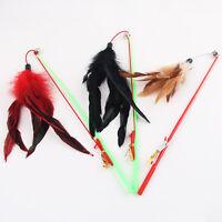 Canne à pêche type oiseau plume.teaser baguette en plastiquePET jouet pour`chats