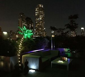7 Foot Lighted Palm Tree Led Light Outdoor Outside Patio Christmas Decoration
