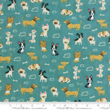 WOOF WOOF MEOW 20562 16 Turquoise Blue STACY HSU Moda QUILT FABRIC Cats & Dogs