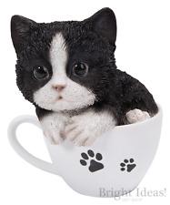 Vivid Arts - PET PALS KITTEN CAT IN TEACUP & KITTEN BOX - Black & White Kitten