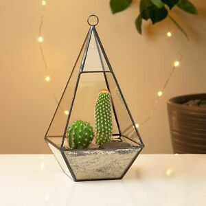 Triangular Glass Geometric Terrarium Tabletop Moss Plant Flower Display Planter