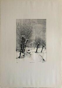 AGOSTINO ZALIANI acquaforte 70x50 Cappelli di Neve firmata numerata anno 1982