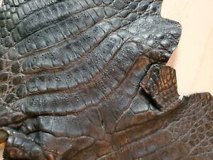 Genuine Crocodile, Alligator Skin Hide Exotic Pelt Black Tanned in south France