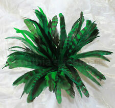"50+ Emerald Green 6-8"" CHINCHILLA COQUE rooster Feathers, Millinery, Cynthia's"