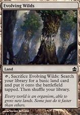 4x Terre Selvagge in Evoluzione - Evolving Wilds Com It