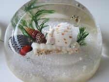 Lucite Sealife Paperweights