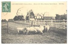 CPA 78 - LES BREVIAIRES (Seine et Oise) - Haras de la Mare, Moutons Oxford-Douin