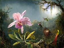 Cattleya orquídea tres brasileño colibríes 100% Algodón Lona Impresión De Foto