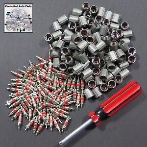 100 WHEEL TIRE VALVE STEM CORE VALVE CAP & TOOL TIRE SENSOR TPMS Bulk VP-GM02