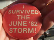 Vintage Pinback Button: I Survived the '82 Storm! Evansville IN and Henderson KY