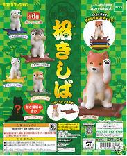 Maneki-Shiba Figure complete set Gashapon Epoch Japan Maneki-neko Shiba Inu Dog