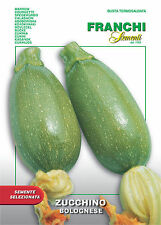 25 Semi/Seeds ZUCCHINO Bolognese