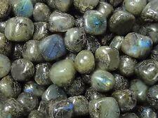 60-80 1lb 460g LABRADORITE TUMBLED STONE Crystal Healing Reiki Wicca pink blue