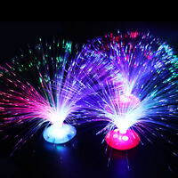LED Fiber Optic Light Multi-color Lamp Holiday Wedding Home Decoration Toy Gifts