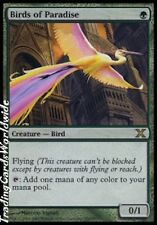 Birds of Paradise // NM // Tenth 10th Edition // engl. // Magic the Gathering