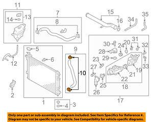 HYUNDAI OEM 06-18 Sonata 2.4L-L4 Radiator-Lower Hose Clamp 253312P044