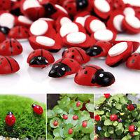 10x Mini Ladybug Beatles Garden Ornaments Scenery Craft For Plant Fairy BR