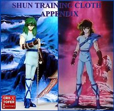 SHUN ANDROMEDA TRAINING CLOTH APPENDIX, SAINT SEIYA MYTH CLOTH andromede PLAIN