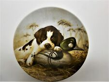 """New In Box, Springer Spaniel Collectors Limited Edition Plate """"Dog Tired"""" Usa"""