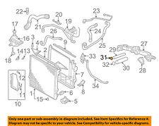 BMW OEM 00-03 X5 4.4L-V8 Radiator-Water Pipe O-ring Right 11531710055