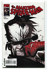 The Amazing Spider-Man #576 NM  Kelly Bachalo   Marvel Comics CBX9A