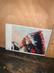 Chief Yellow Wolf Antique Postcard