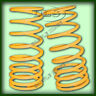 """LAND ROVER DISCOVERY 1,DEFENDER 90/110 FRONT 40mm """"EXTRA LIFT""""  SPRINGS (DA4202)"""