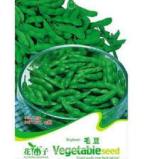 Edamame Seed Soybean Seed Soy Bean Green Vegetable ~1 Pack 20 Seeds~